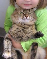 rebenok_and_cat