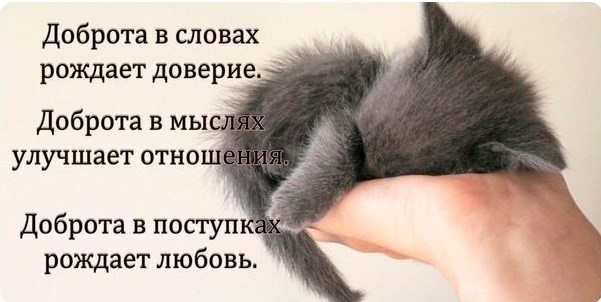 dobroye_slovo